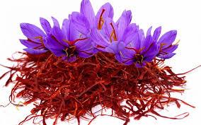 پیش بینی رشد۳۰ درصدی تولید زعفران/صادرات ۲۵ درصد افزایش یافت