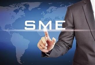 بیش از 10 درصد صادرات کل کشور در گروی SME هاست