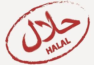 توسعه صادرات و نشان حلال