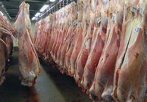 اعلام آمادگی ۵ کشور برای حضور در بازار گوشت ایران